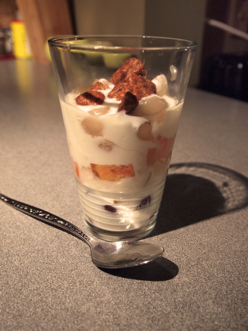 yogurt parfait urbanpocketknife