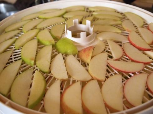 organic apple chips urbanpocketknife