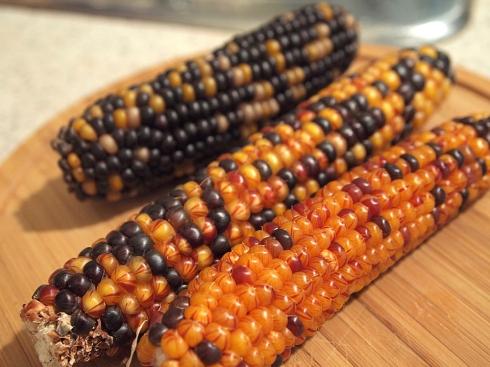organic popcorn theurbanpocketknife