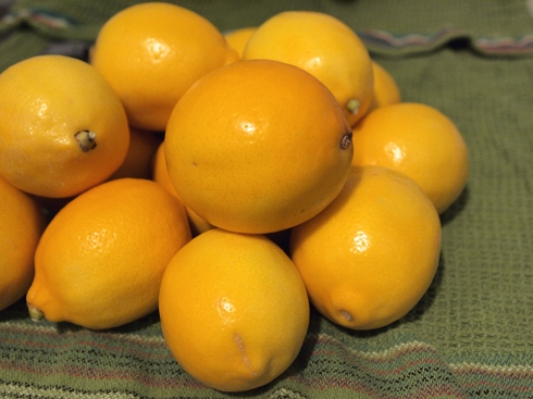 lemon scraps theurbanpocketknife